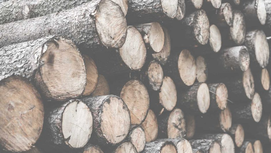 Pile of Felled Wood Logs Desaturated