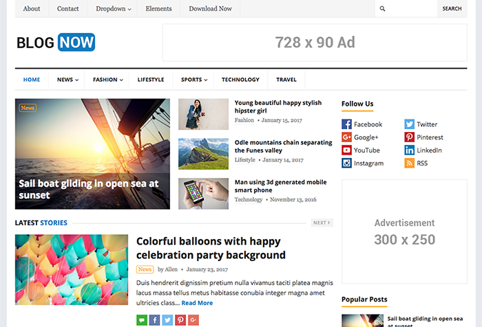 Free WordPress Theme - BlogNow