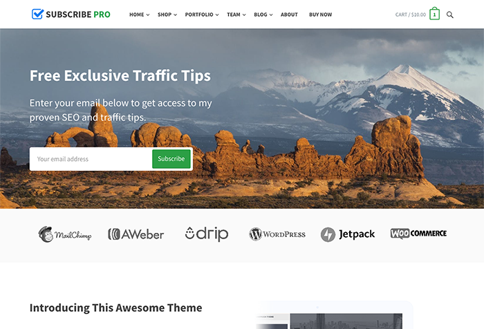 Subscribe WordPress Theme