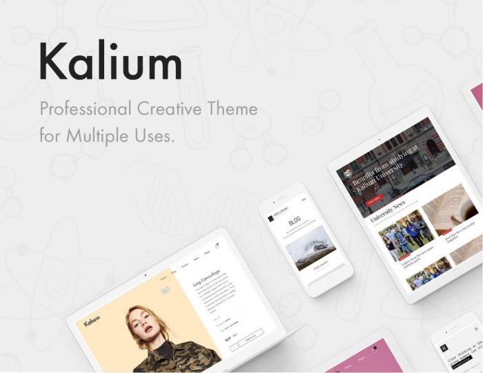 Blog Themes